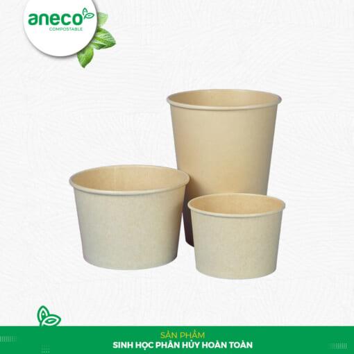 AnEco ra mắt dòng sản phẩm bã mía với nhiều ưu điển vượt trội