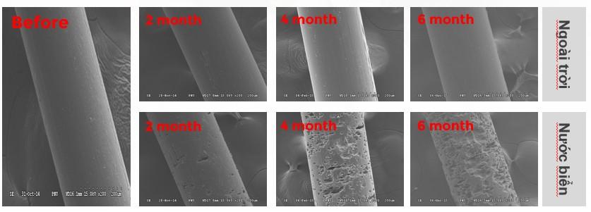 An Phát Holdings thử nghiệm khả năng phân hủy sinh học của ngư cụ trong môi trường nước biển