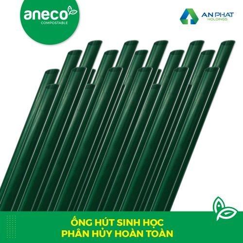 Bộ sưu tập xanh: ống hút bột gạo, ống hút cỏ, ống hút inox, ống hút tre, ống hút AnEco
