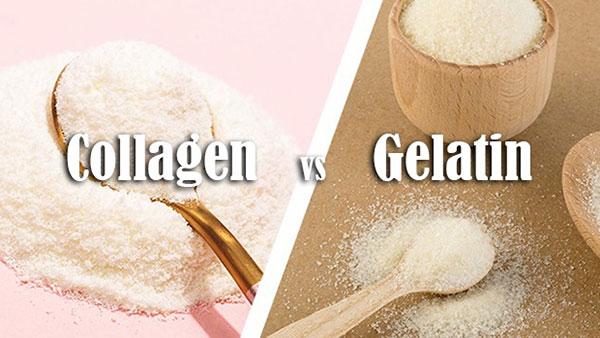 Collagen và Gelatin được ứng dụng nhiều trong làm đẹp và y khoa