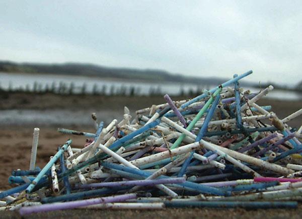 Rác thải từ ống hút nhựa gây ô nhiễm môi trường