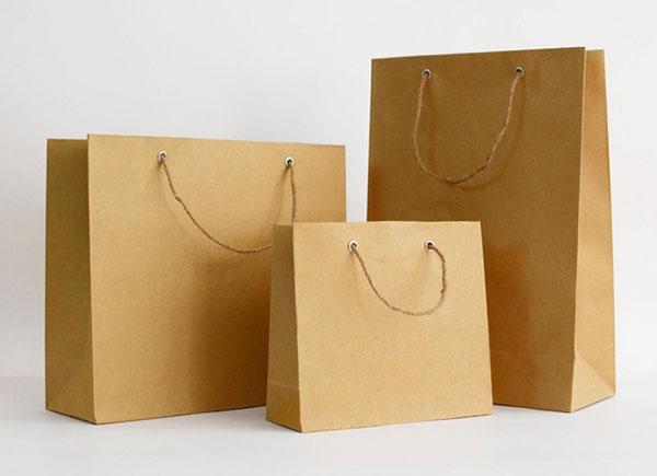 Túi giấy không chống nước nên phù hợp hơn với các sản phẩm như thời trang, quần áo, đồ khô... .