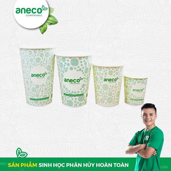 Ly giấy AnEco được yêu thích nhờ khả năng phân hủy hoàn toàn