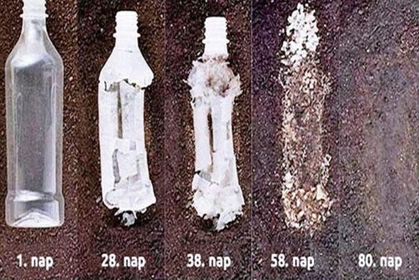 Quá trình chai nhựa phân hủy