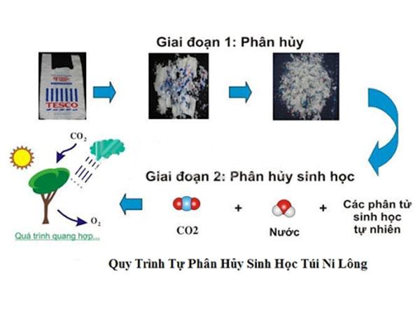 Phân biệt nhựa không phân hủy sinh học và nhựa phân hủy sinh học
