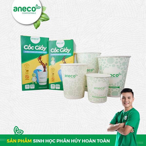 Sản phẩm AnEco được sản xuất theo quy trình sản xuất cốc giấy tự hủy