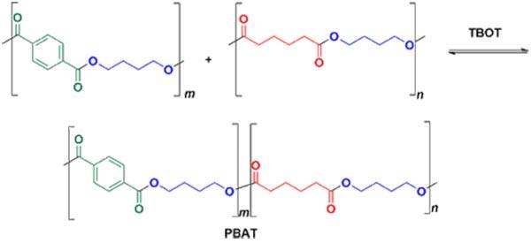 Cho hai polyeste 1 và 2 phản ứng với nhau dưới xúc tác TBOT để tạo ra Polybutylene adipate-co-terephthalate (PBAT)