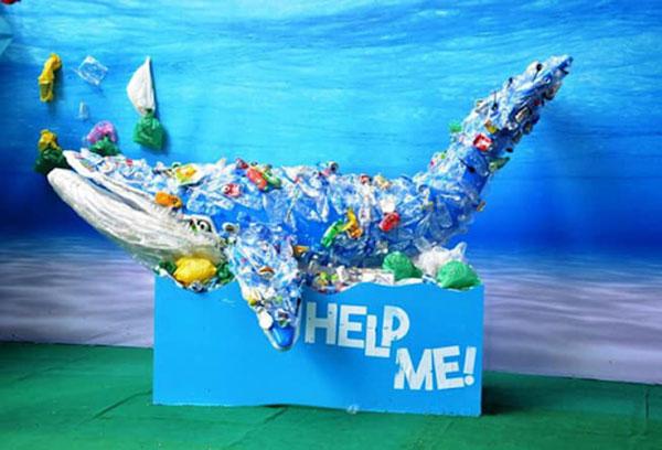 Hàng loạt các sinh vật biển đang đứng bên bờ tuyệt chủng vì ô nhiễm rác thải nhựa.